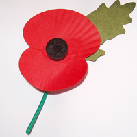 Remembrance projects