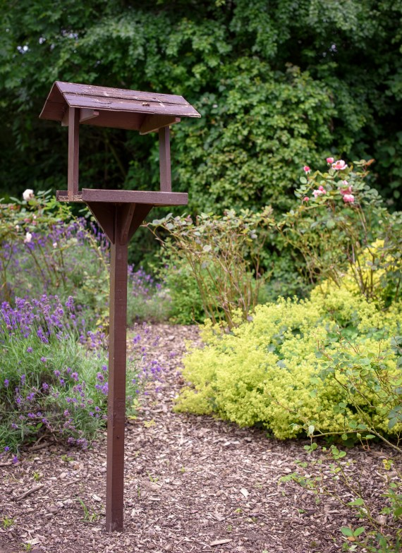 An image of a wooden bird table in the Lawley community garden, with a background of trees and bushes.