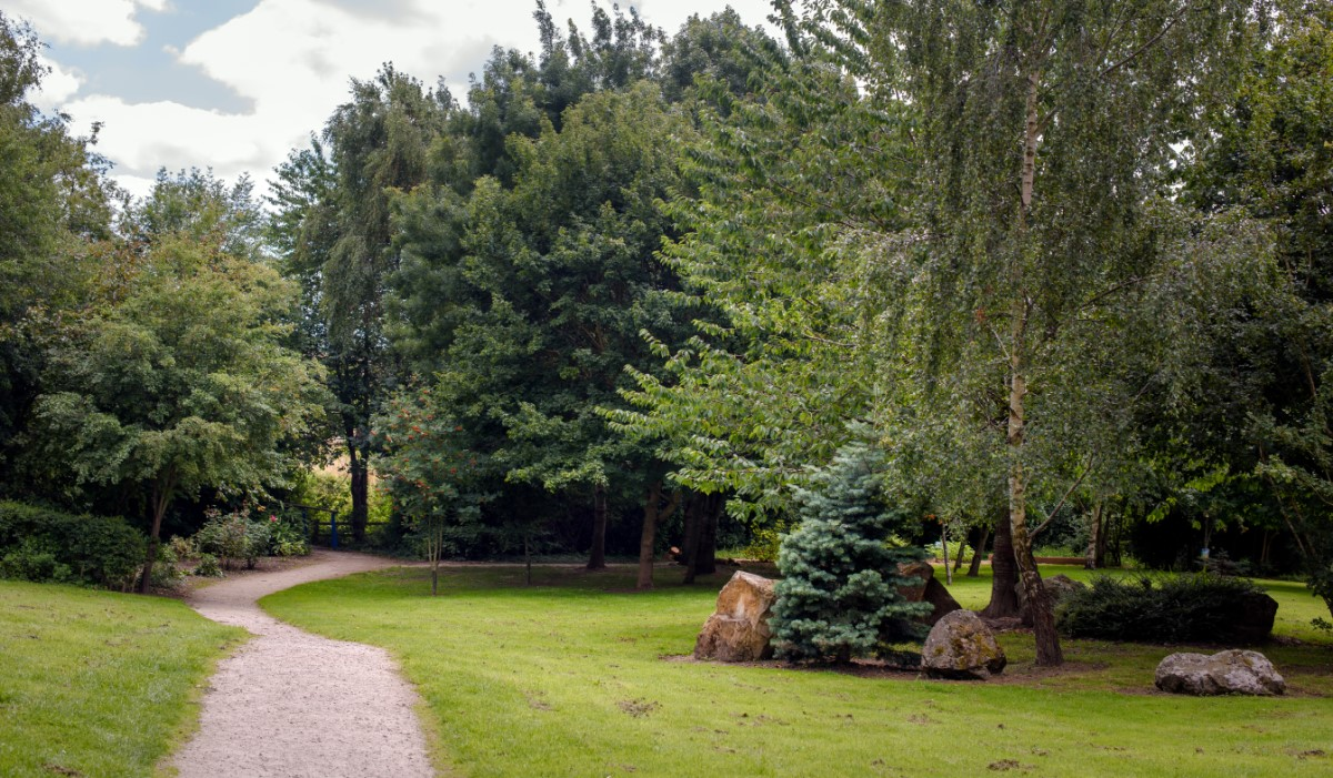 A photograph of a footpath winding through a grassy area and disappearing into some trees in the distance.