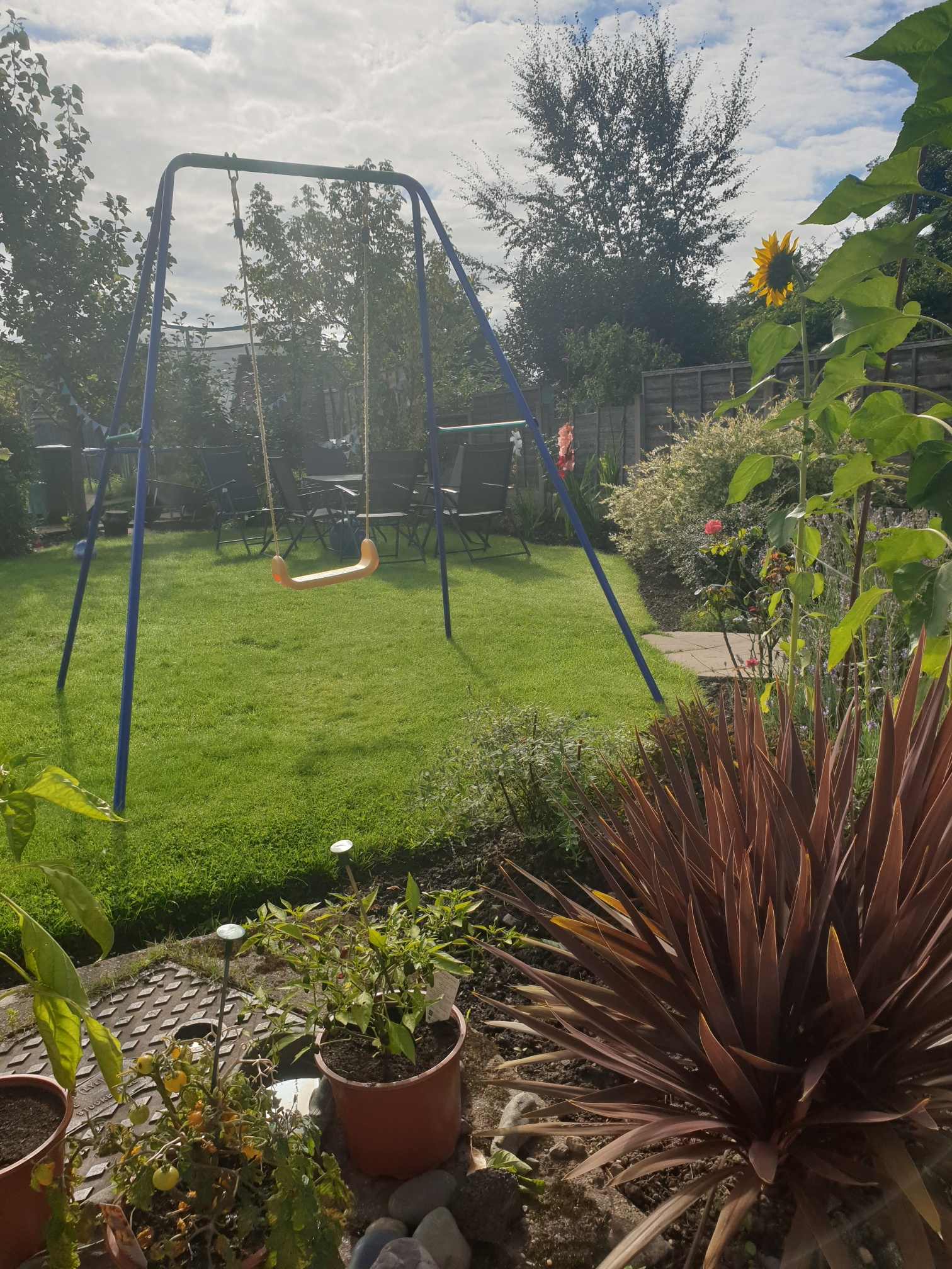 A photograph of a large back garden, with assorted potted plants in the foreground, and a child's swing on a lawn just beyond them. There is some garden furniture on the lawn in the background.