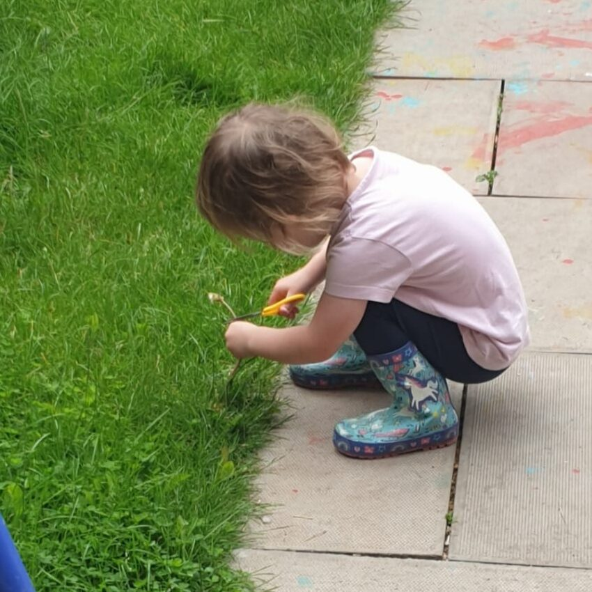 A child crouching down and using a pair of scissors to cut a weed.