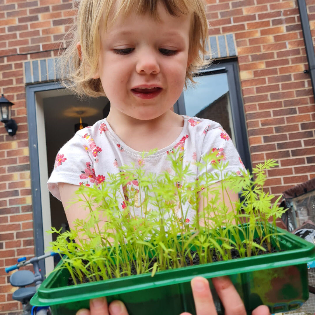 A child holding up a wide pot of young plants.