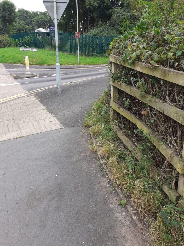A footpath with freshly-trimmed shrubs now neatly behind a fence.